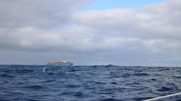 Cargo ship! So close!